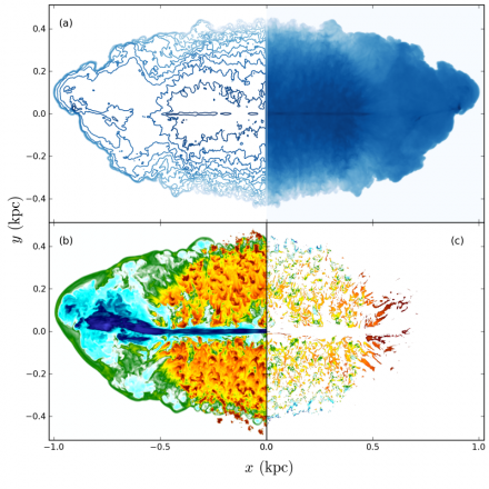 Simulation of jets in the dense interstellar medium of a young radio galaxy